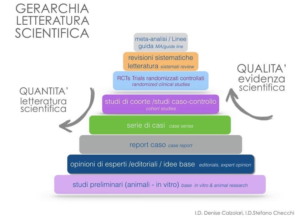 gerarchia degli studi scientifici